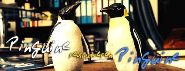 Homosoziale Reproduktion/Erfolgsprinzip Ähnlichkeit – oder Pinguine rekrutieren Pinguine